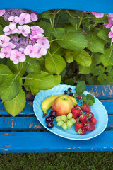 Nutritious Fruits on Plate on Top of the Chair.