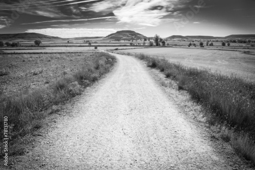 landscape with a country road - 78131780