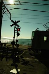 逆光の江ノ電と海岸