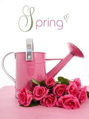 Beautiful pink Spring time watering can and pink roses