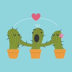 three pots of cactus