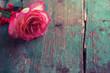Obrazy na płótnie, fototapety, zdjęcia, fotoobrazy drukowane : Romantic background.