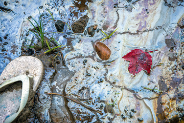 Sandal and Maple Leaf on Toxic Oil Pollution at the Beach