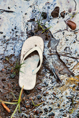 Abandoned Sandal on An Oil Slick Toxic Beach