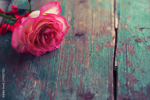 Deurstickers Roses Romantic background.