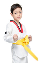 Little tae kwon do boy martial art yellow belt