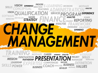 Word cloud of Change Management related items