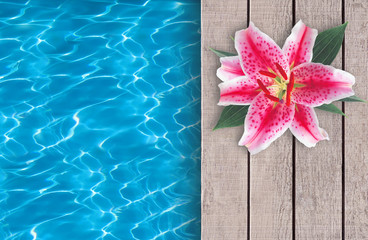 Swimming pool and pink lily on wooden deck ideal for backgrounds