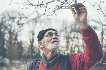 Old Man Holding Twigs from a Leafless Tree