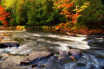 Autumn River Background