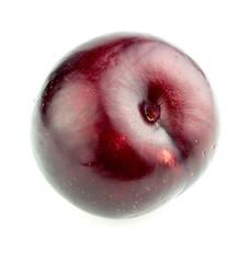 Macro closeup of ripe plum isolated on white