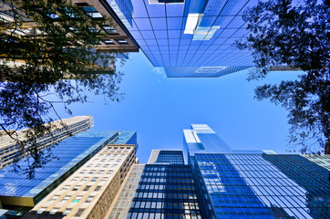 Office Buildings in New York