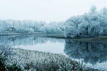River in winter in Lonjsko polje, Croatia
