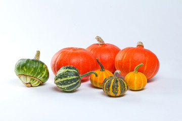 Different kinds of pumpkins. Halloween decoration