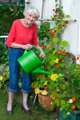 Old Woman Watering Flower Plants at the Garden.