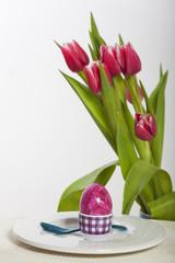 Osterei und Tulpen auf weiß