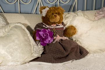 Teddy Bear in the cushions