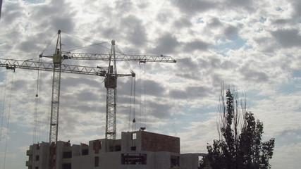 Cranes working timelapse
