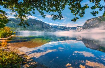 Foggy summer morning on the Bohinj lake