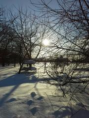 Снежный солнечный февраль!