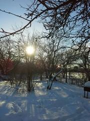 Яркое солнце в феврале!!!