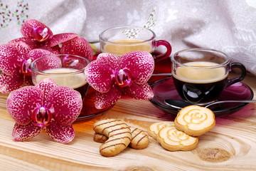Orchidea espresso