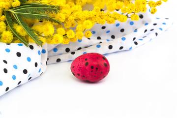 Easter quail eggs mimosa flowers
