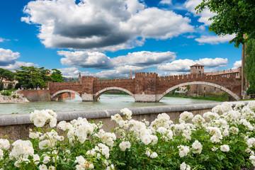 Adige river, medieval bridge Ponte Scaligero in Verona. Italy
