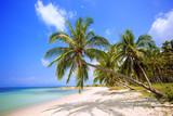 Beach. Palm coast.