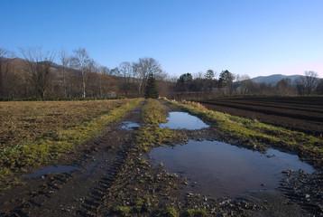 ルスツの田舎道