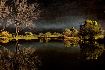 Scenic pond with mist, Royal Natal National Park
