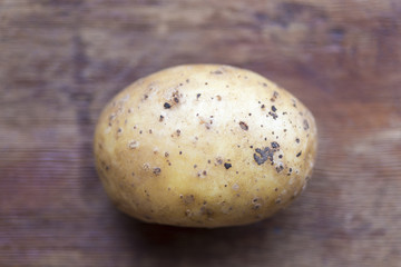 potato shallow DOF