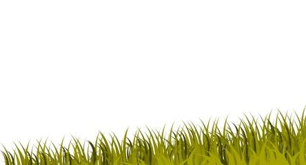 bandeau d'herbe