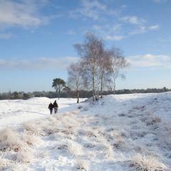 couple walks near Zeist in winter