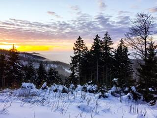 Abendstimmung im Thüringer Wald