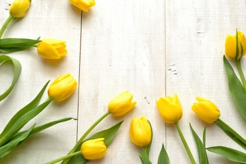 Yellow tulips on white wooden background