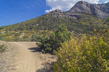 The trail in the Crimean mountains.