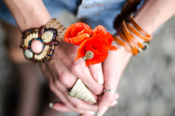 Young pretty girl with red poppy flowers in her hands