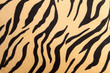 abstract with Bengal tiger texture