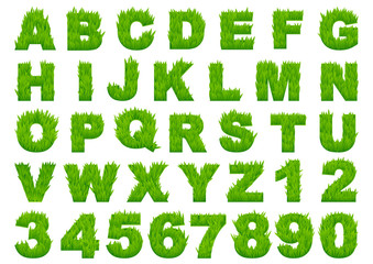Green grass alphabet with letters and numbers