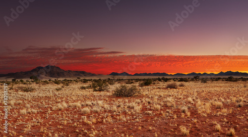 Kalahari Desert, Namibia - 78203757