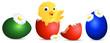 Zdjęcia na płótnie, fototapety, obrazy : easter chick egg