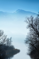 bare trees on a lake and blurred blue mountains in the backgroun