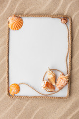 Beautiful frame of rope and sea shells with a white background o
