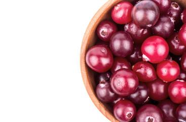 Cranberries in bowl