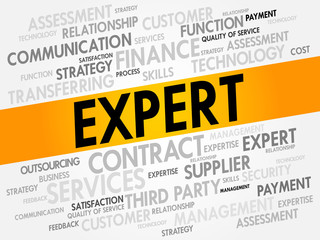 Expert related items words cloud, business concept
