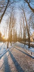 Sunlit snowy street. Panoramic view of the Alexander Garden in S