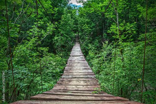 Fototapety, obrazy : Suspension bridge
