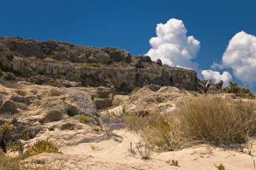 Dünenlandschaft bei Elafonissi, Kreta