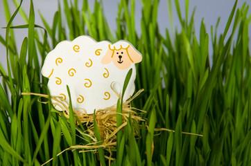 easter sheep concept